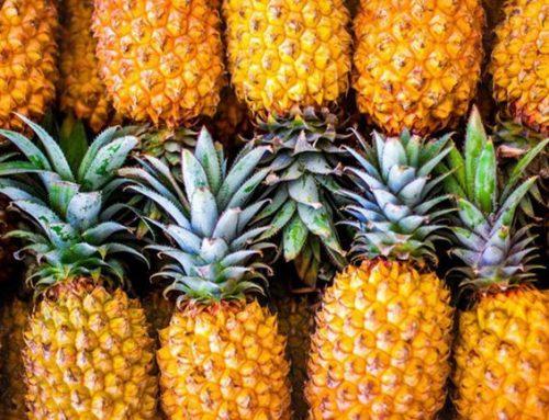 Lots of Health Benefits of Fresh Pineapple